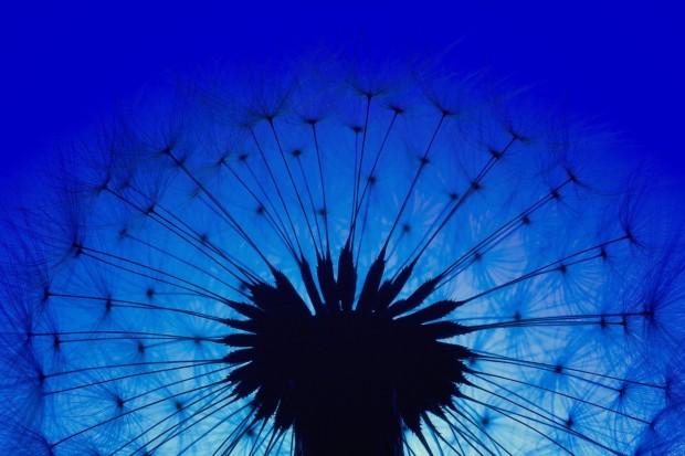 trendfarbe 2020 blau